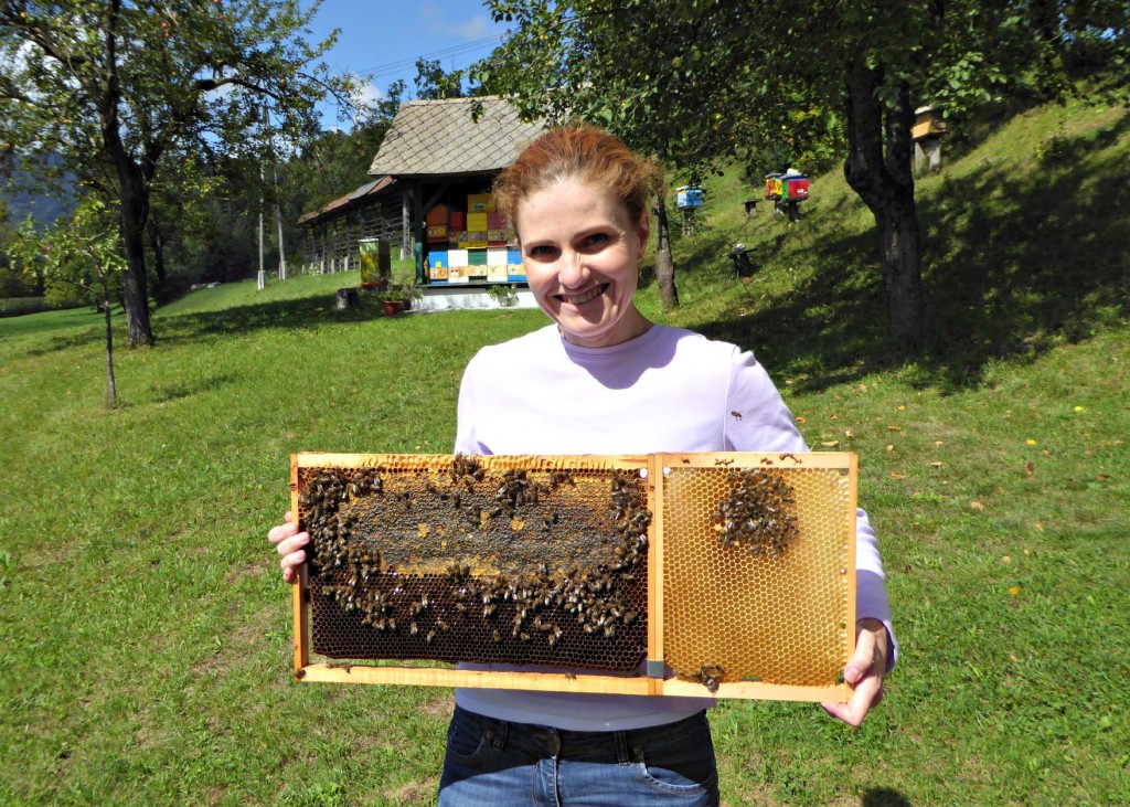 Holding live bees